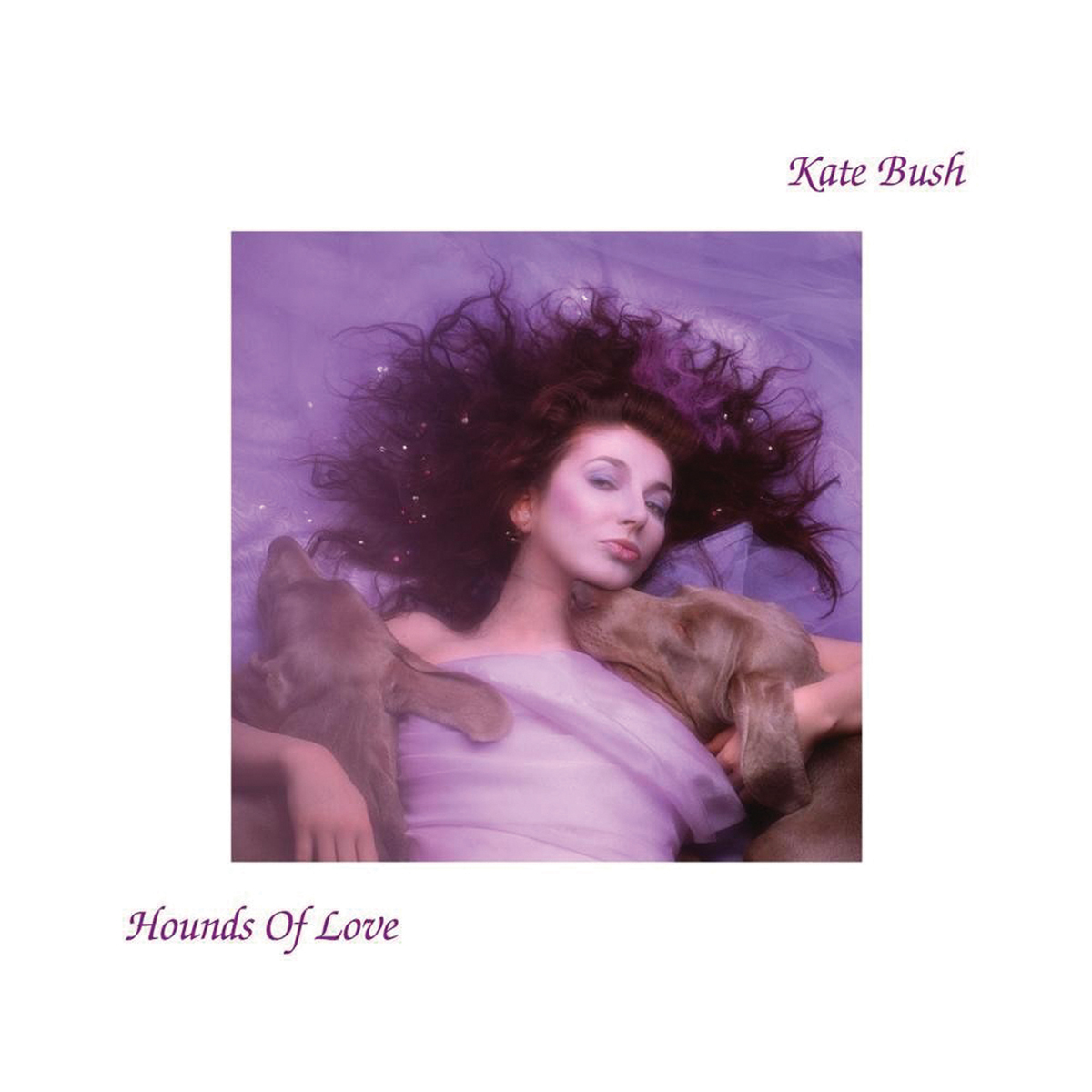 The Making of Kate Bush's Hounds of Love