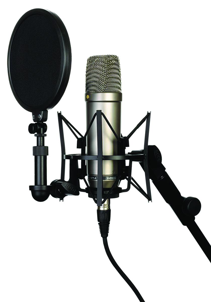 microphones bg 7