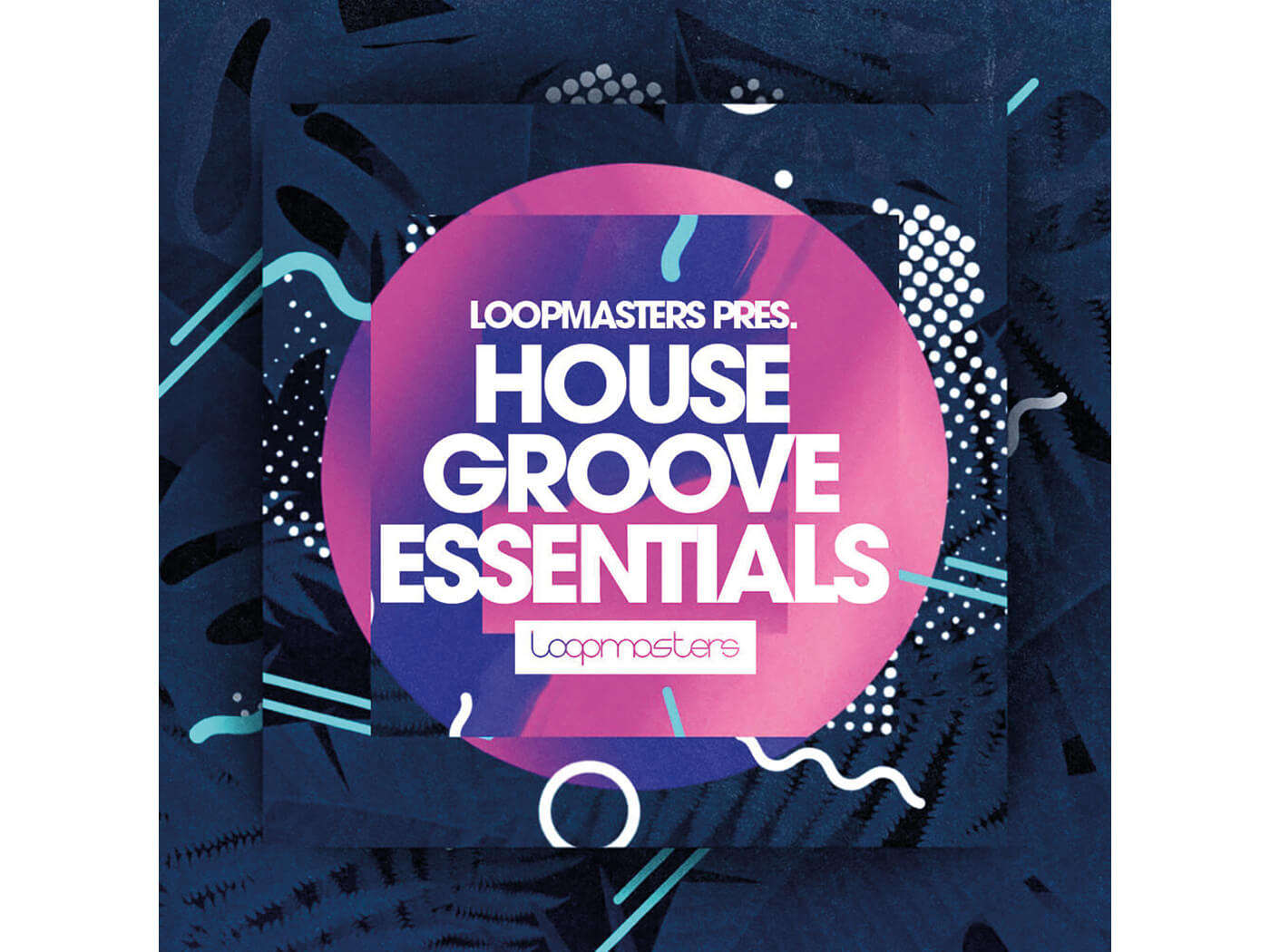 Loopmasters House Groove Essentials Review