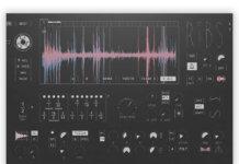 Hyoya Ribs plug-in interface