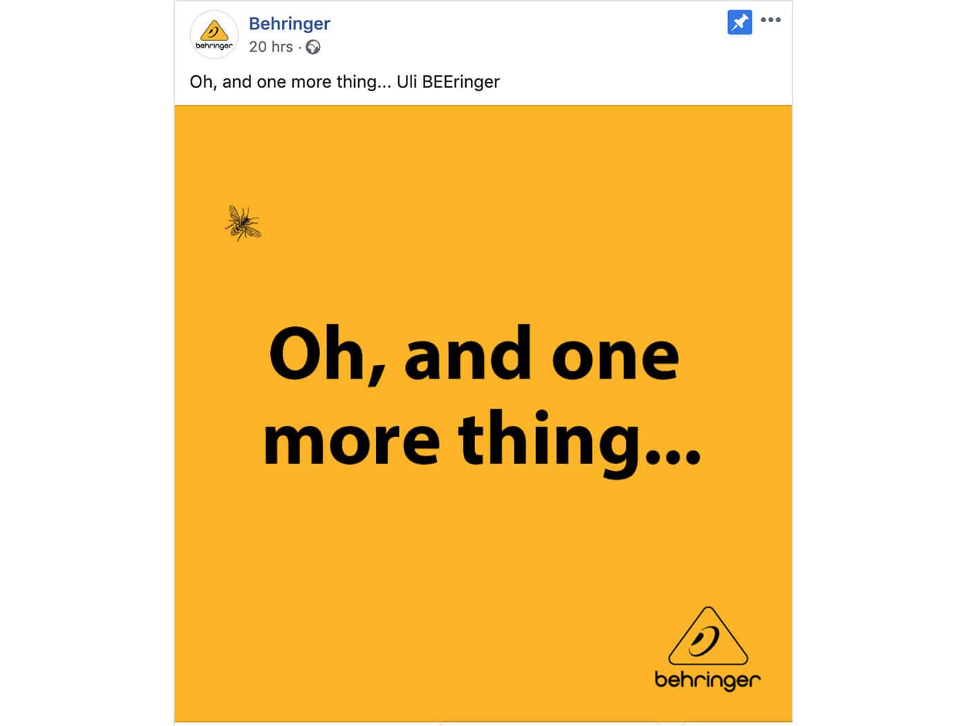 Behringer Wasp facebook