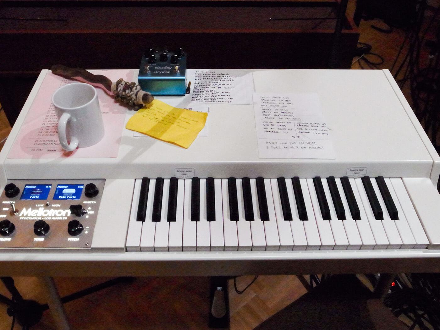 Yann Tiersen (Mellotron)