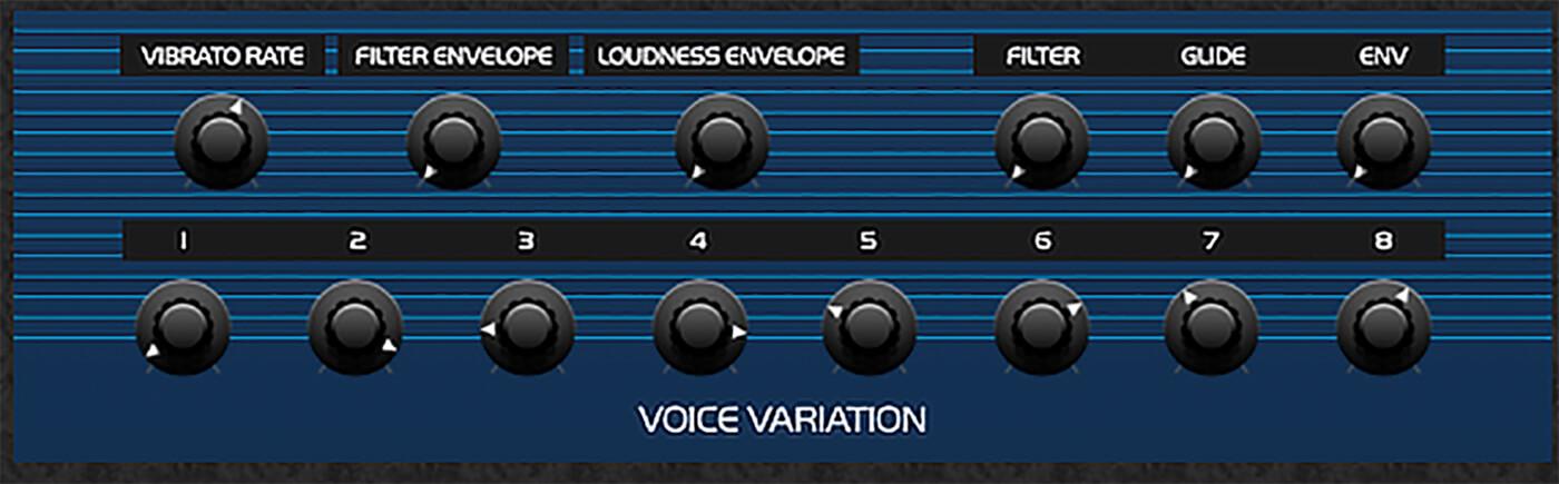 P22 - Voice variation