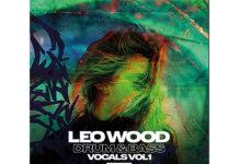 Loopmasters Leo Wood Drum & Bass Vocals Vol.1