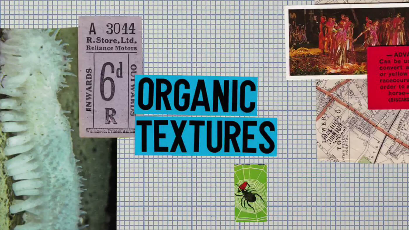 Spitfire Audio - LABS Organic Textures